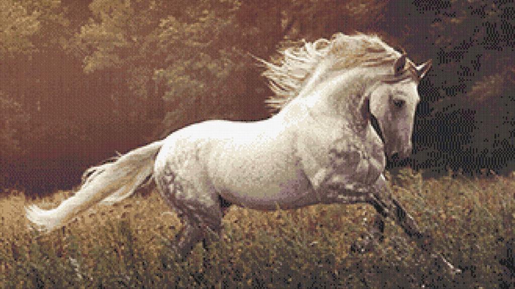 Patrón punto de cruz caballo