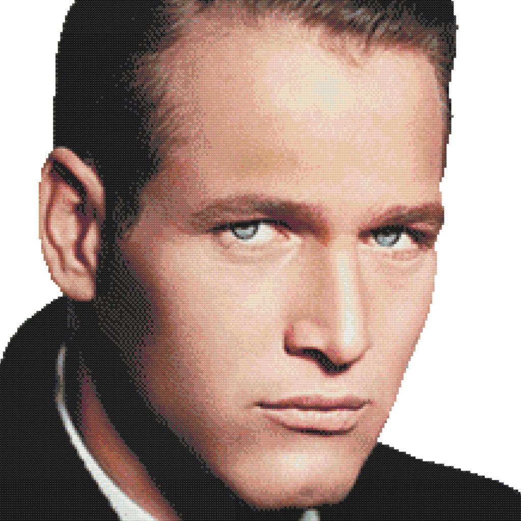 Patrón punto de cruz retrato de Paul Newman